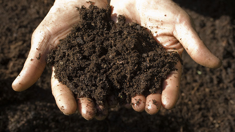 New antibiotic unearthed from the dirt