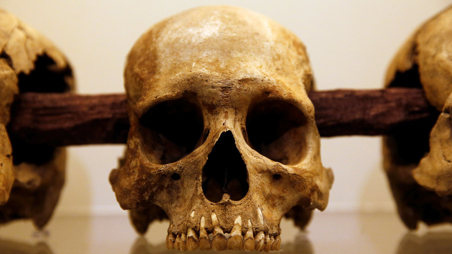 Sweden's 8,000yo skulls were brutally smashed and mounted on stakes – study