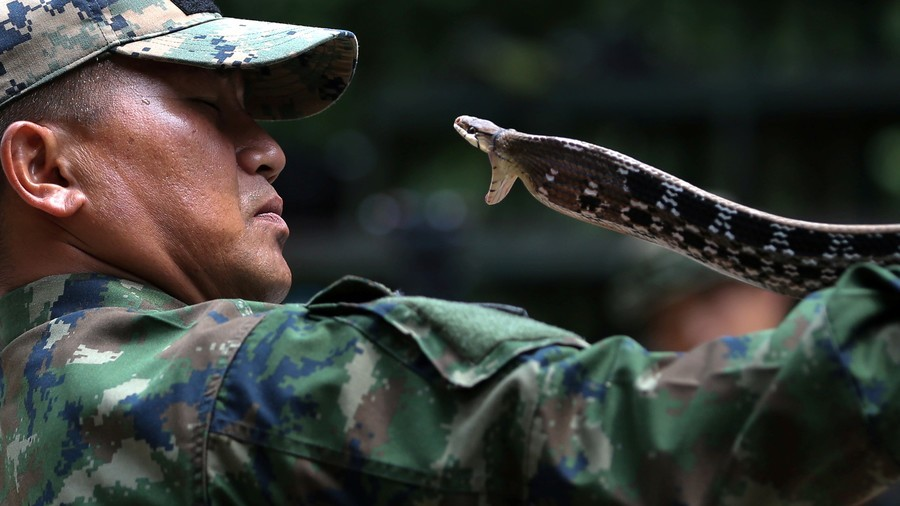 Inside US-Thai war games where soldiers guzzle cobra blood (PHOTOS)