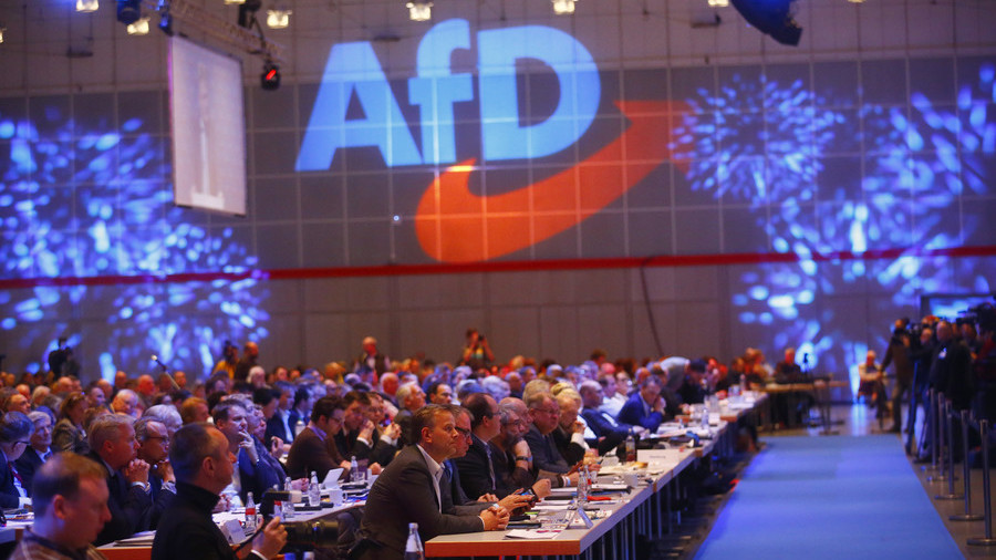 Germany's AfD Populists Second Most Popular Party for First Time