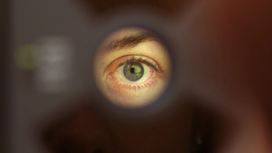 Eye spy heart disease: Google retinal scan 'can diagnose cardiac problem'