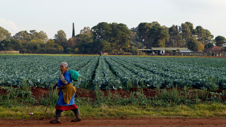 White South African farmers claiming persecution at home seek refuge in Australia