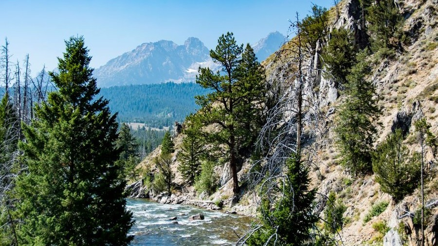 Fool's Gold? The Rockies treasure hunt which has killed 4 people (VIDEO)