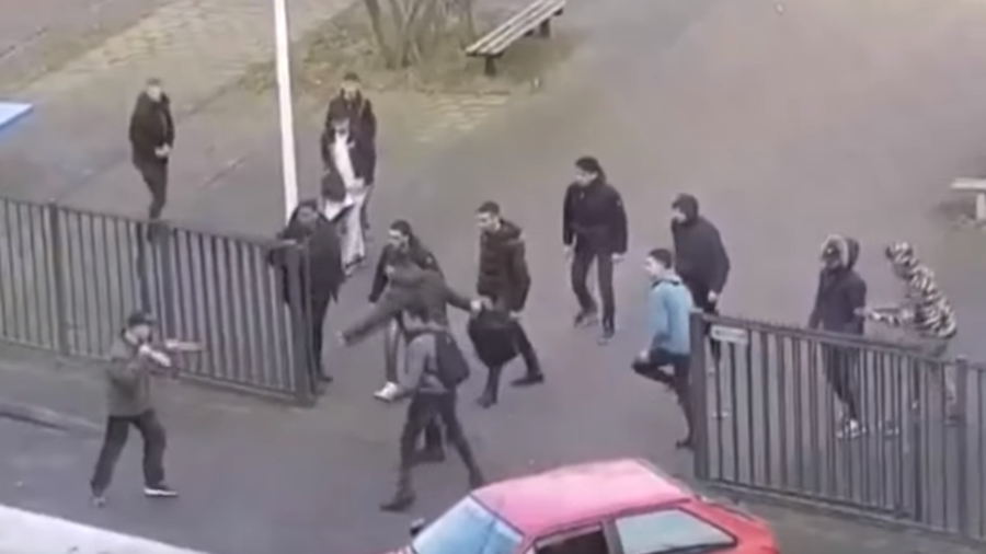 Dutch students fend off 'disturbed' knifeman armed with 2 blades (VIDEO)