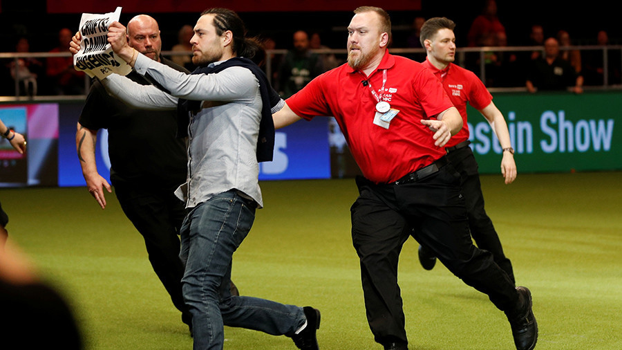 'Canine eugenics': Chaos at Crufts dog show as 'terrier-ist' storms winner's circle (VIDEO)