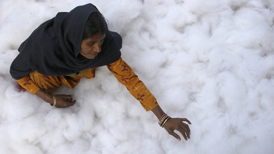 India cuts Monsanto's GM cotton seed royalty, may trigger another row