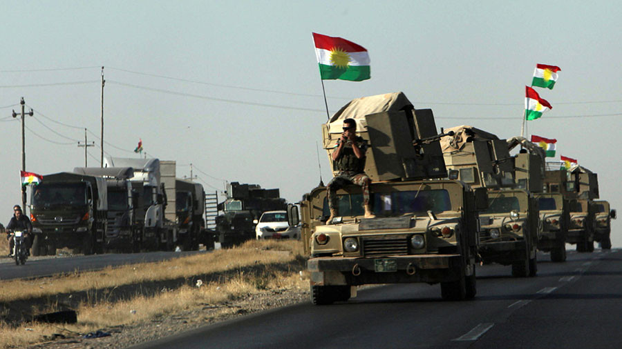 Ankara considers joint op with Baghdad against Iraqi Kurds – FM