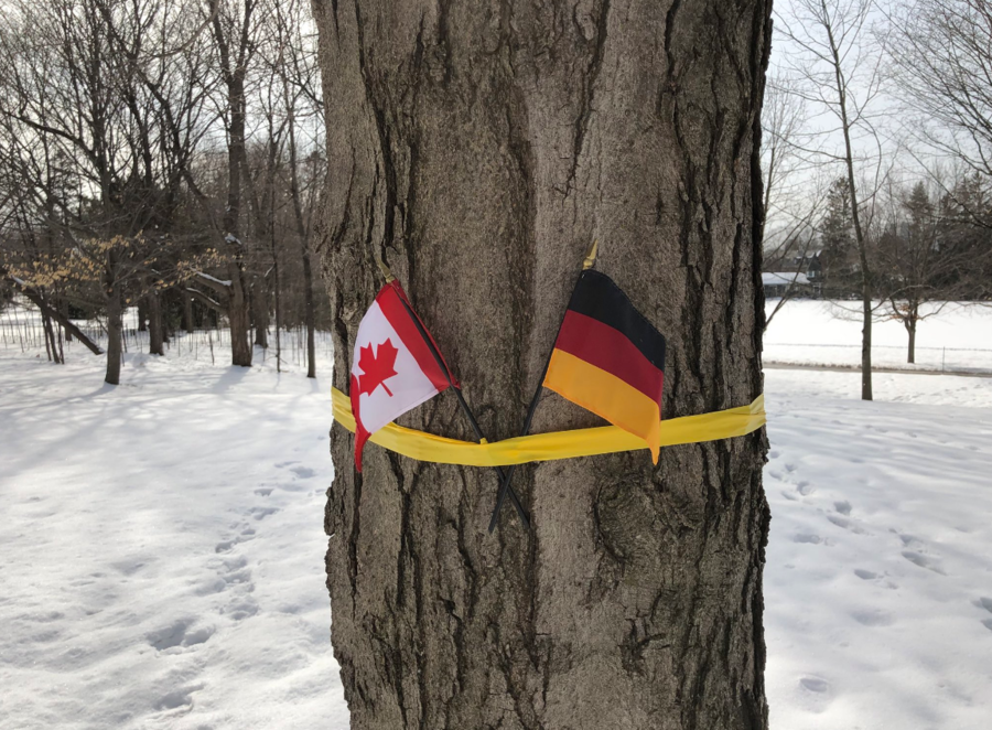 False flag: Canada lays out German tricolor for Belgian royals at WWI event