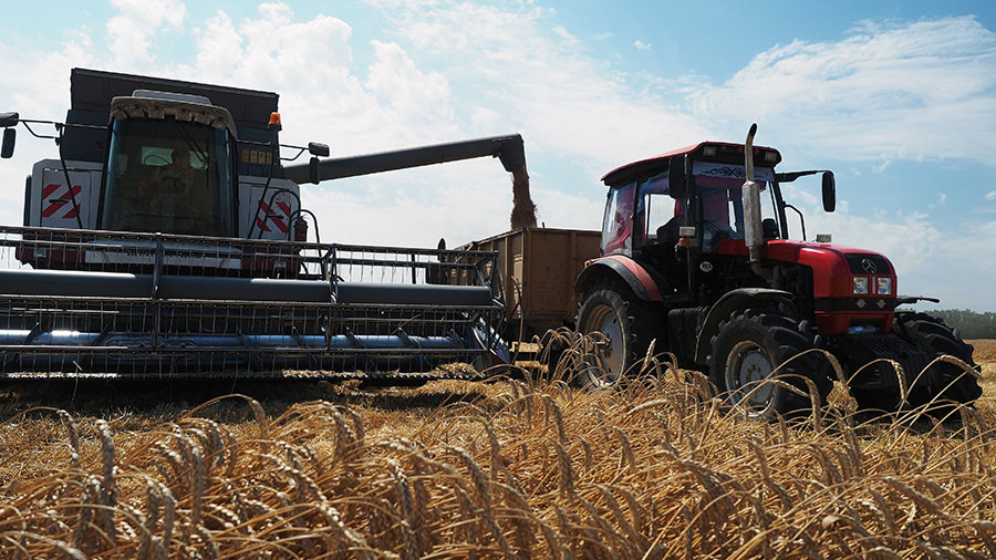 Agriculture makes much more money for Russia than arms exports – Putin