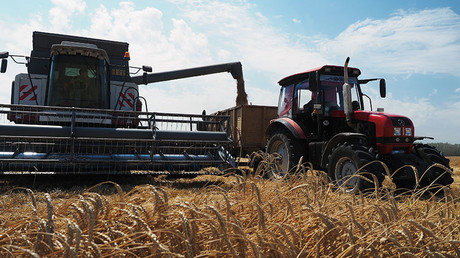 Chinese tariffs hitting US where it's most vulnerable – farming