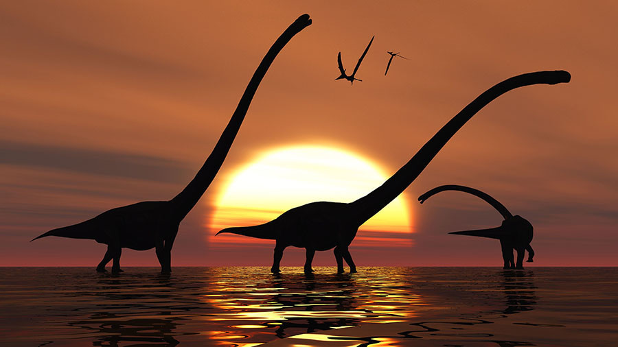 Scientists Explain Evolution Of Largest Dinosaurs