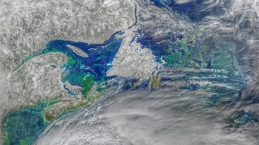 Incredible psychedelic phytoplankton bloom captured from space (PHOTO)