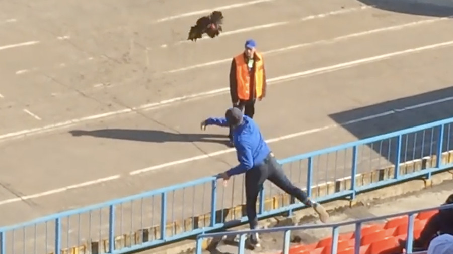 Bear delivers game ball at Russian soccer game