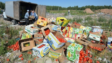 Banned tomatoes confiscated at the Russia-Belarus border are destroyed at the landfill near Gusino, Smolensk Region © Sputnik