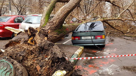 Child killed, 17 injured as fierce storm with strong winds rips through Moscow (PHOTOS)
