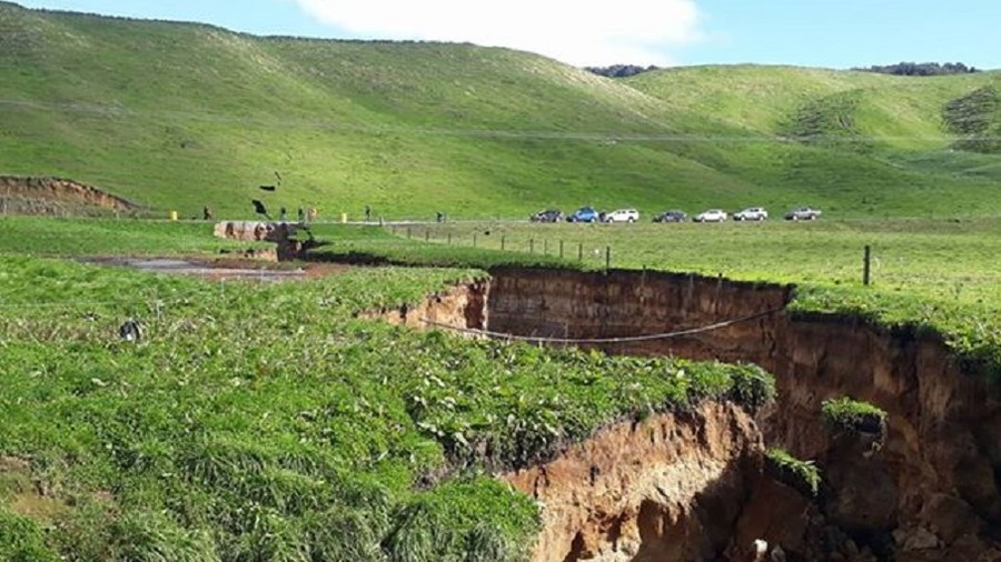 Mini 'Grand Canyon': 6-story sinkhole opens up on NZ farm (PHOTOS, VIDEO)