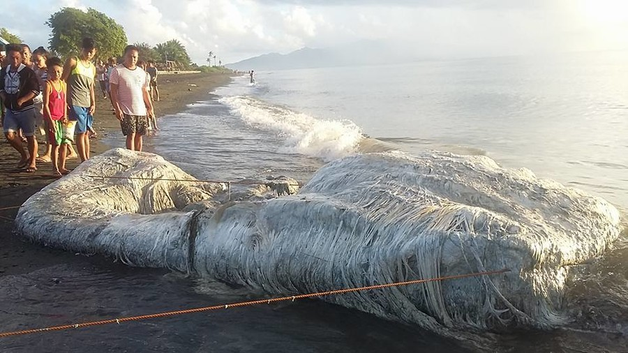 Horrific 'hairy' creature washes up on Philippine beach