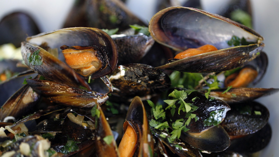 Opioids are starting to be found in mussels near Canadian waters