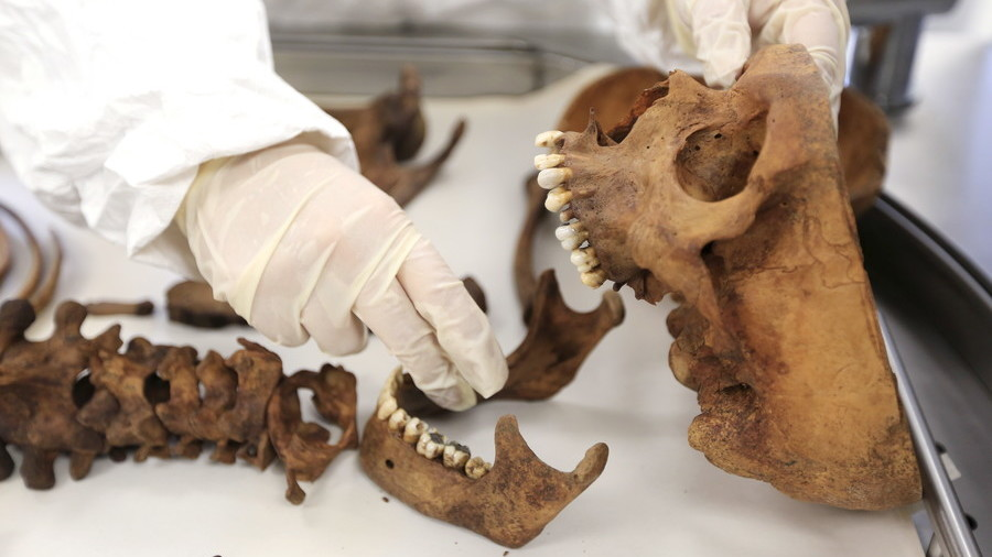 Body farm in UK? Britain 'mulls' creating grisly research center with decaying humans