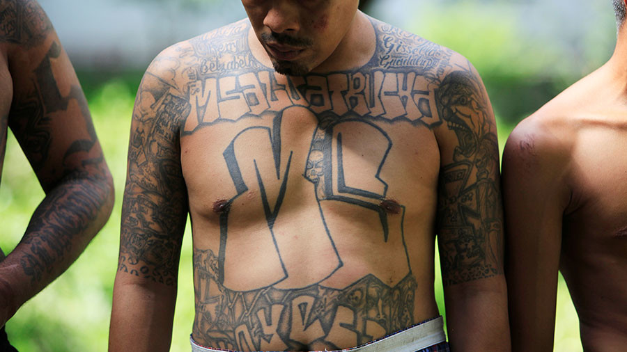 Animals times ten: White House doubles down on Trump's MS-13 remark