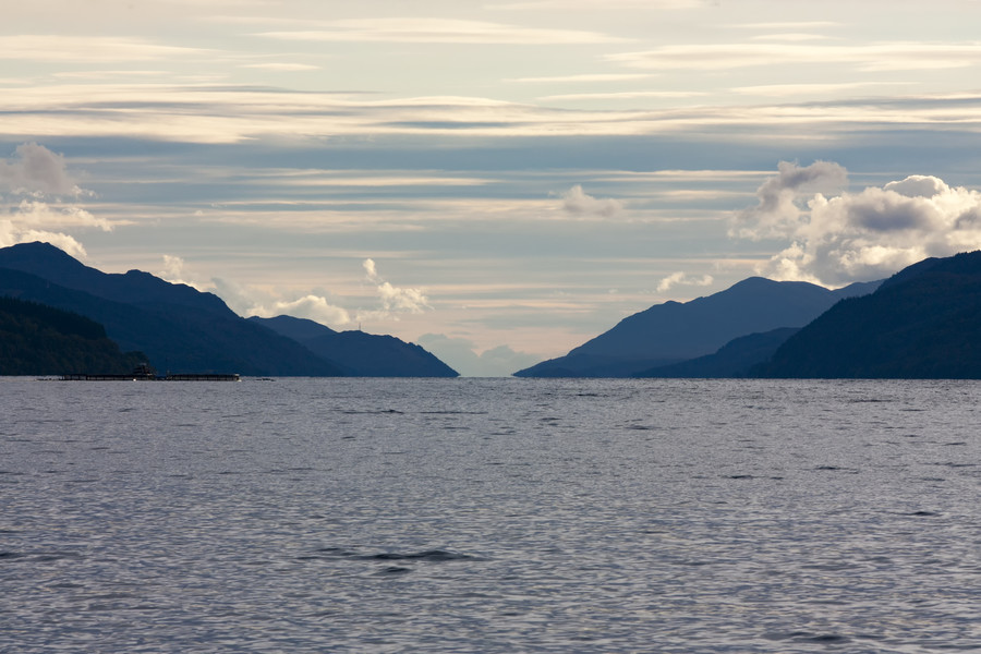 Nessie's back! New footage appears to show 'monster' splashing in Loch Ness (VIDEO, POLL)