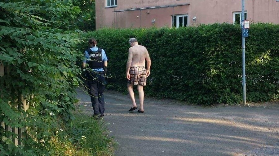 Emperor's new clothes? Germany's Gauland ridiculed after theft leaves him in his underwear (PHOTO)