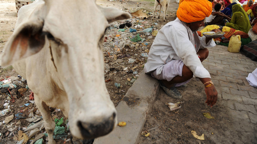 Man beaten to death by mob in India over alleged attempt to slaughter cow