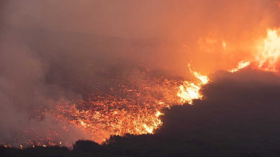 'Biggest blaze in living memory' sparks panic as fire destroys acres of land, homes evacuated