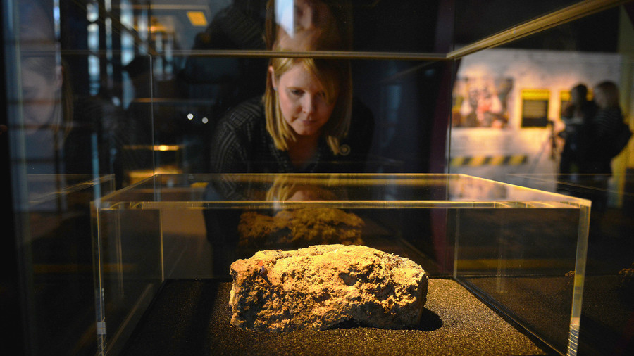 Fly hatching fatberg boosts visitors at Museum of London