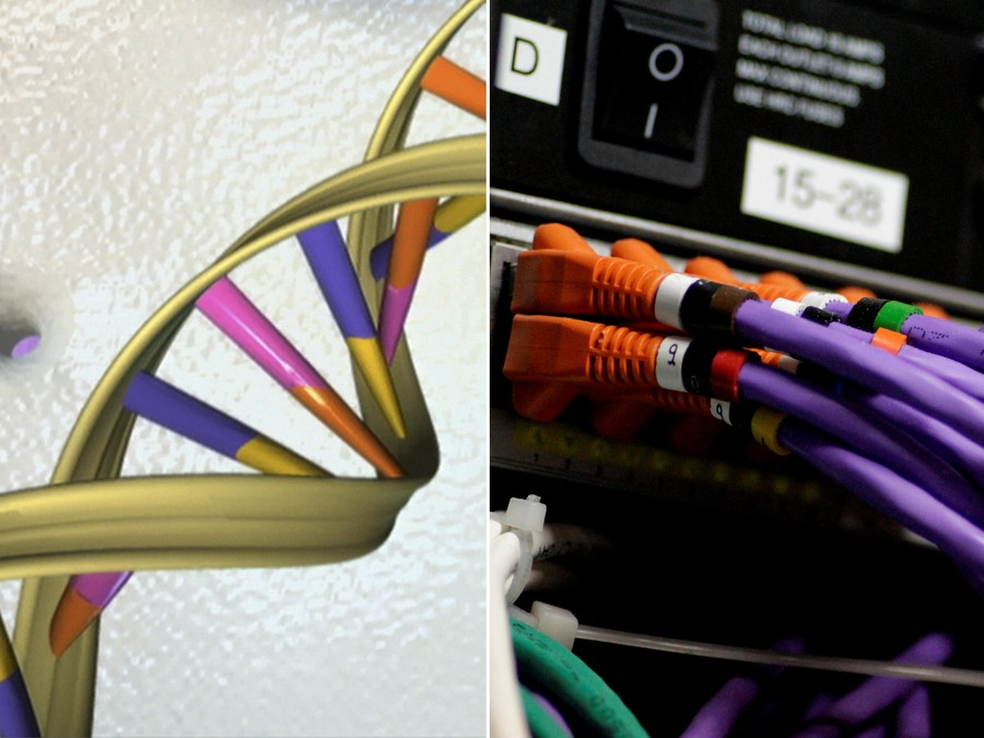 US intelligence developing human DNA-like models to hoard your personal data