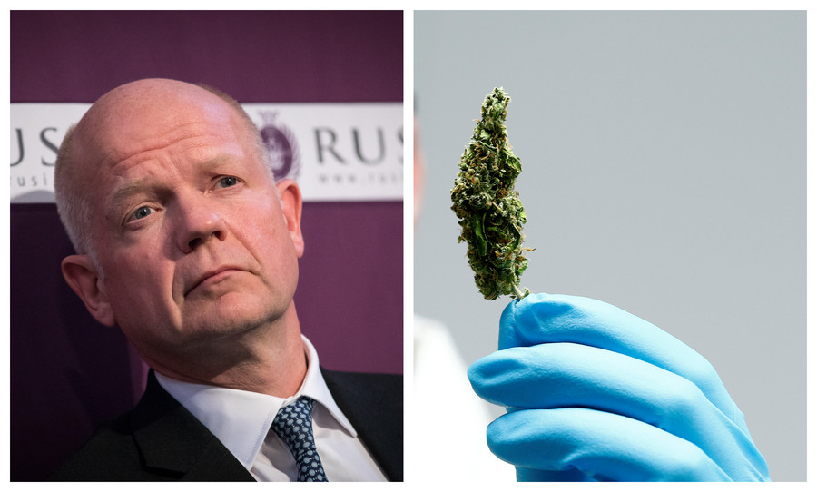 'Policing cannabis like trying to win back the Empire': Ex-Tory boss calls time on govt drug policy