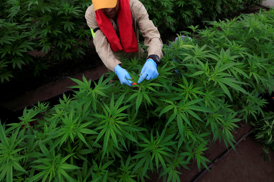 FDA approves America's first marijuana-based medication