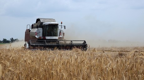 Russia boosts investment in Crimea's booming agriculture