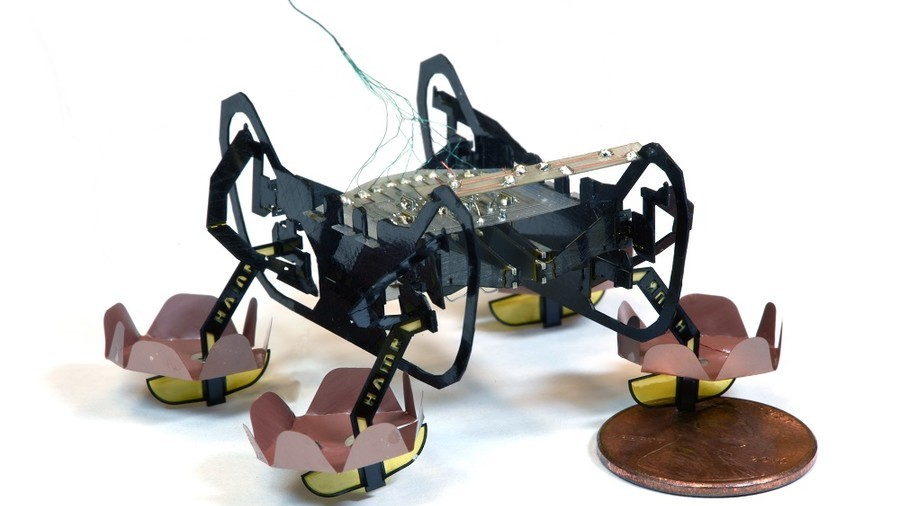 Ewww: Robotic cockroach can walk on and under water (VIDEO)