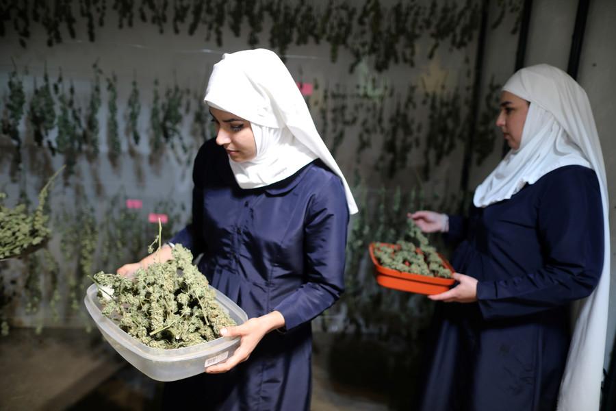 No pot sacrament for Indiana Church of Cannabis