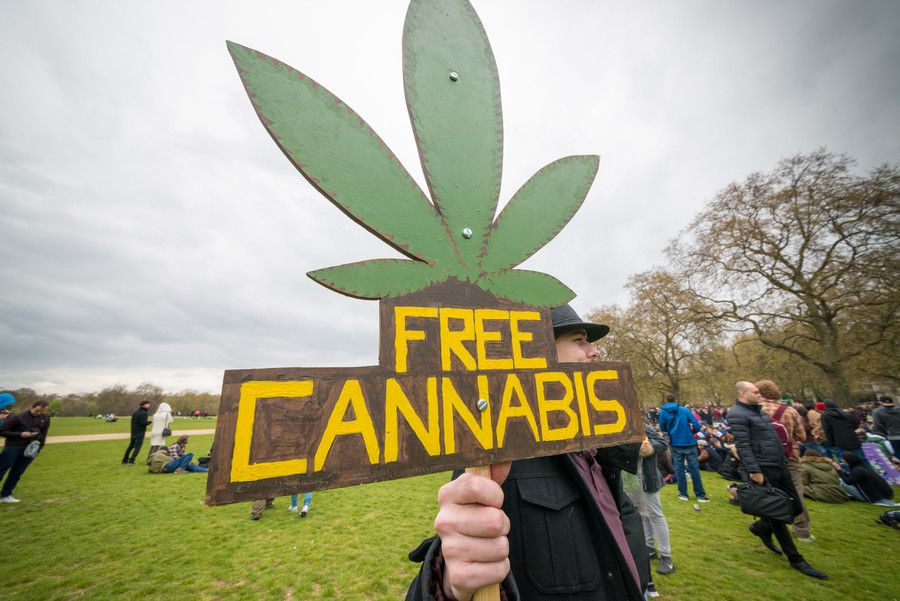 Cannabis-based medicines to be permitted in UK, Sajid Javid announces