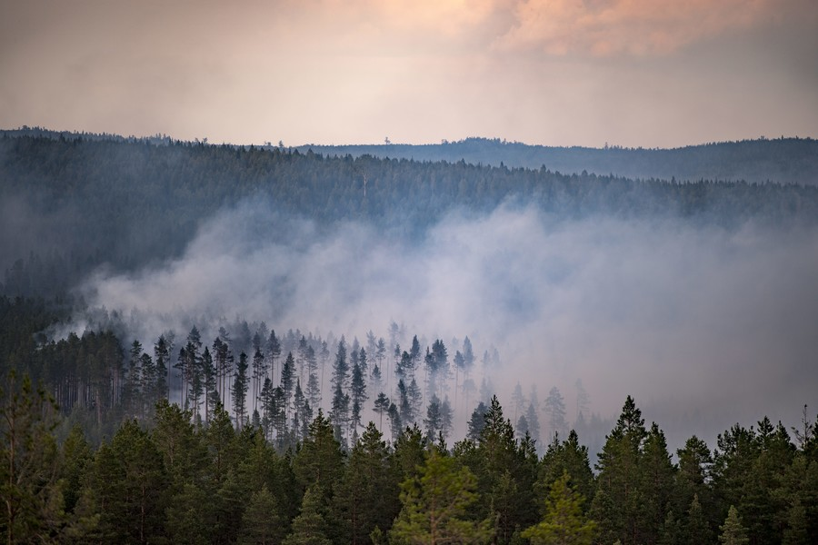 Sweden drops bombs to extinguish wildfires caused by summer heatwave (VIDEO)