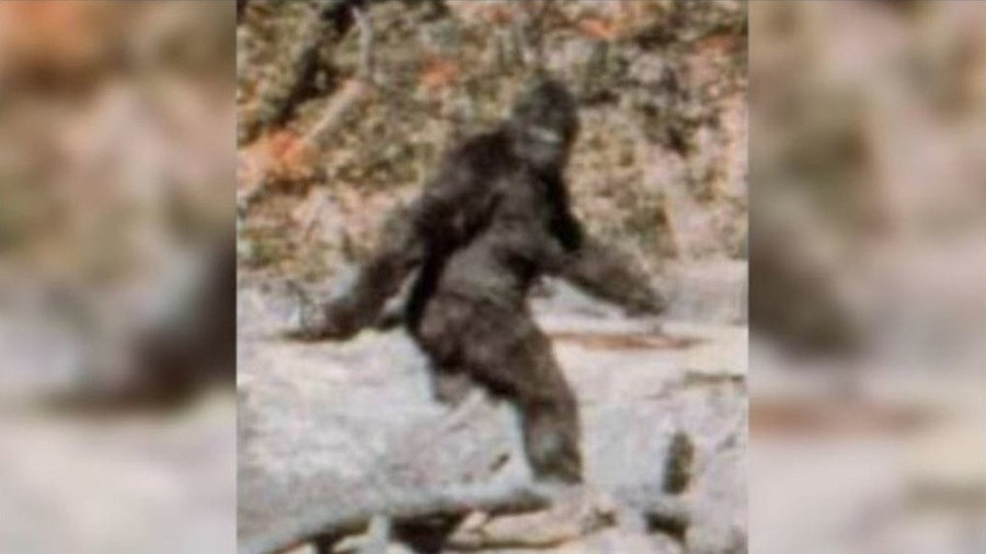 'Bigfoot erotica devotee': Virginia Democrat's incredible claim against rival Riggleman (PHOTO)