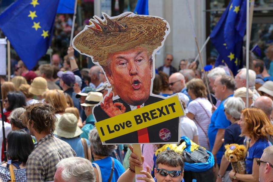 Brexit crisis confirms you can't make soup out of an idea