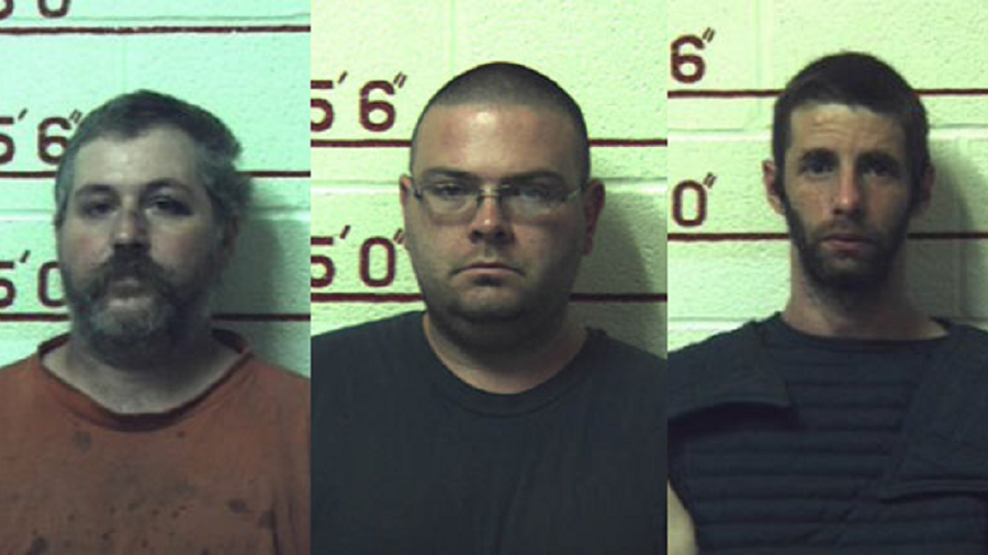 3 Pennsylvania men charged with 1,460 counts of 'sexual intercourse with animals'