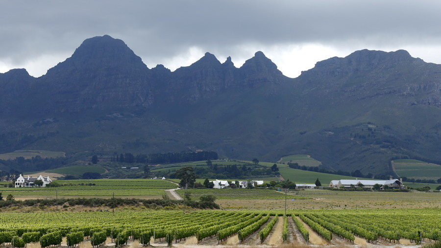 South Africa's land expropriation could trigger default warns agricultural bank