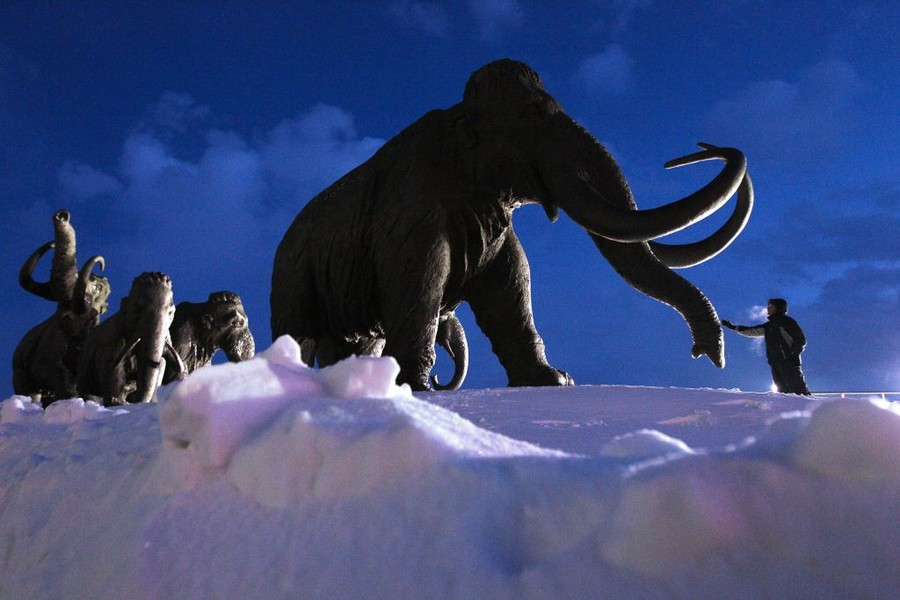 World's only 'prickly' woolly mammoth hat goes on sale in Siberia for $10k