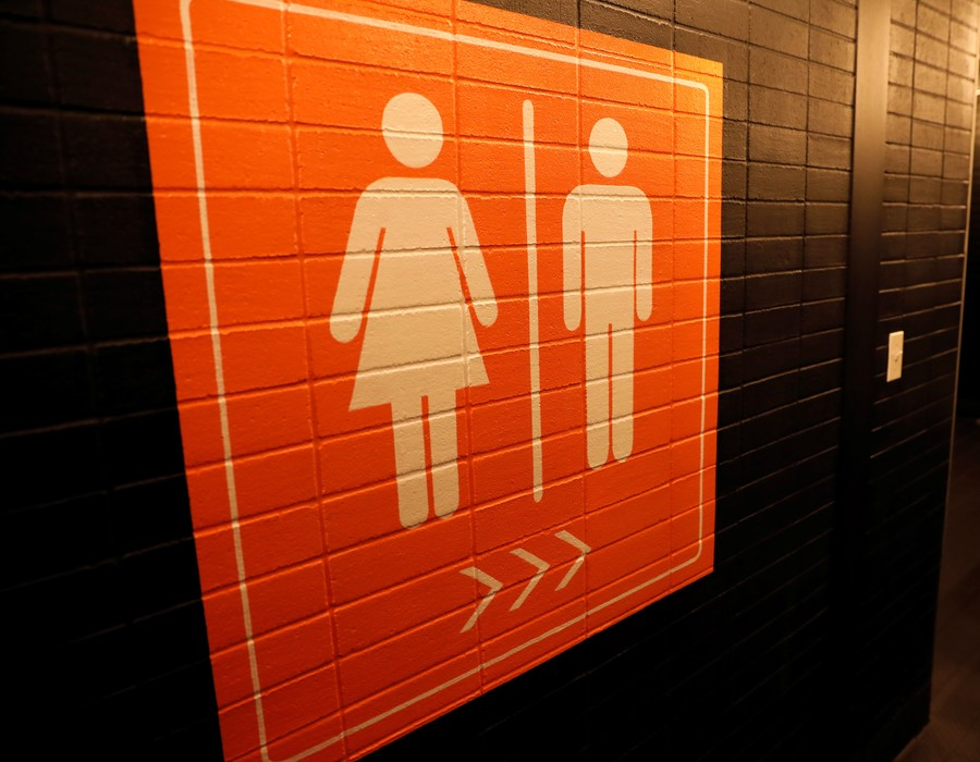 Attack on academic freedom or stand against pseudoscience: Is Hungary right to ban gender studies?