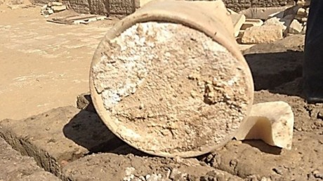 3,000yo Egyptian cheese infected with deadly disease unearthed at ancient burial site
