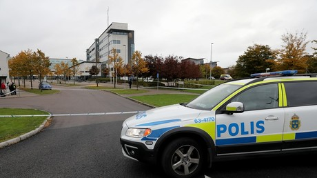 Swedish right-wing parliamentary candidate attacked by 'immigrant' during campaign meeting