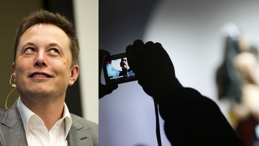 I want your Musk: Tesla CEO offered $150k for weed-themed porno role