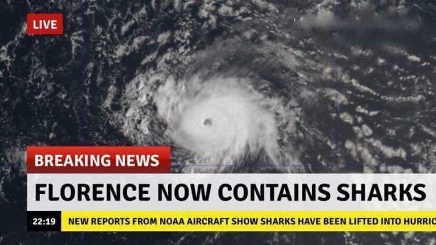 Fake hurricane Florence image depicts Sharknado scenario