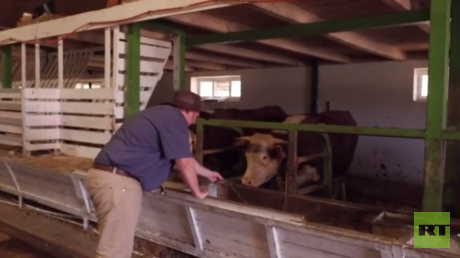 New home in Russia: White South African farmer seeks safety as land seizure looms (VIDEO)