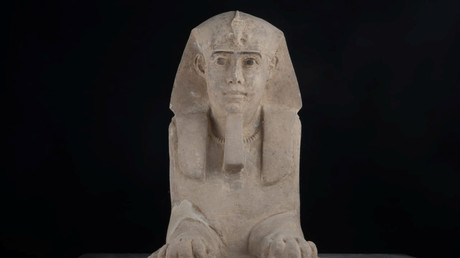 Ancient Egyptian sphinx discovered water draining at temple (PHOTOS)