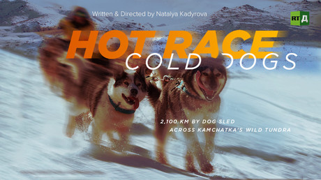 Hot race, cold dogs